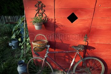 Bicycle and garden shed in a kitchen garden