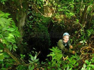 Maros Karst exploration forest - Sulawesi Indonesia