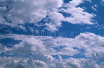 Clouds Stratocumulus in a blue sky