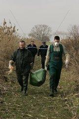 Techniciens ONC & gendarmes portant des cadavres d'oiseaux