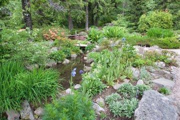 Jardin d'altitude du Haut-Chitelet - Vosges France