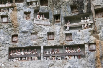 Stone-carved burial site Land of Toraja Sulawesi