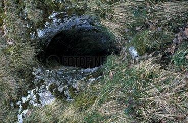 Entrée naturelle de la grotte-laboratoire de Moulis Ariège
