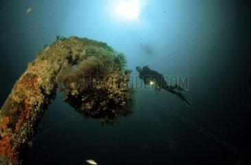 Plongeuse et épave de l'Aeolus Etats Unis d'Amérique