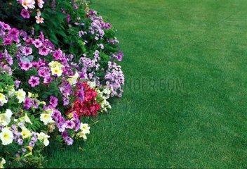Gazon et massif de fleurs