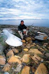 Man examining a horn of caribou Greenland