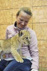 Lion cub in the lap of a woman Zoo Belgrade Serbia