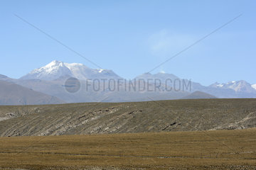 Massive Ampato and Sabancaya volcanoes  seen from the altiplano around Patahuasi  Arequipa Region  Peru