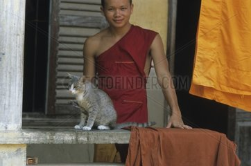 Gray cat sitted on a beam in front of a bonze Kampuchea
