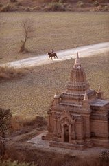 Rider and pagoda of Pagan city Burma