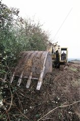 Pulling up of hedges in edge of field France