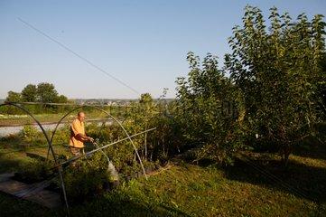 Waterwise watering in a Gocagne network garden