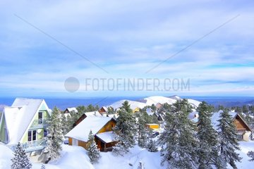 Traditional chalets  Real estate in ski and winter sports resorts in mountain areas  La Pierre Saint Martin ski resort  Arette commune (64)  Pyrenees  France