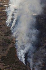 Burn-beating in Ariège - France