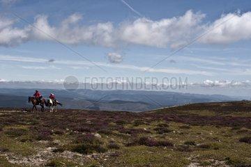 Horseback packing on Stevenson trail in the Cévennes France