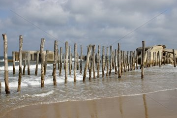 Blockhouses and timber piles to protect the dune storms