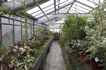 Greenhouse in an horticulture school