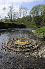 Land Art on a river