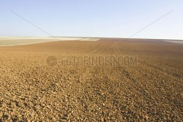 Ground prepared after passage of the rotary harrow France
