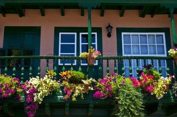 Flowered balcony Santa Cruz de La Palma Canary Islands Spain