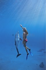Dolphin trainer interacting with Dolphin Dolphin Reef Eilat