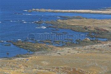 Côte rocheuse Ile Benito Archipel des San Benito Mexique