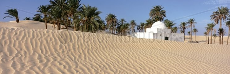 Mausoleum in a group of Palm Trees Douz Region Tunisia