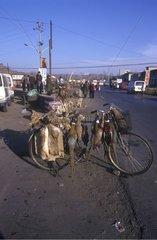 Vente de gibier d'élevage sur une route touristique Chine