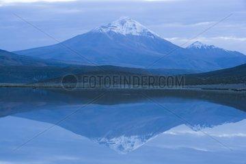 Isluga volcano is reflected in the dawn Chile