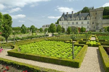 The vegetable garden. Chateau de Villandry  France
