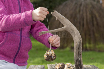 Young girl hanging up homemade fat balls in winter