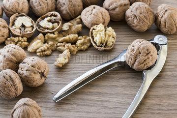 Harvest walnut from a walnut tree  summer  Moselle  France