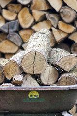Wheelbarrow filled with firewood in a garden