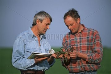Discussion between a farmer and a technician France
