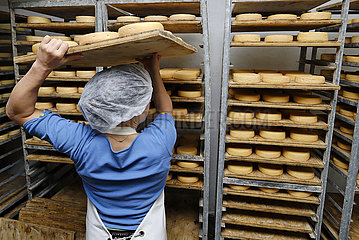 Fabrication du Munster ? la fromagerie du Christelguth - - Breitenbach -