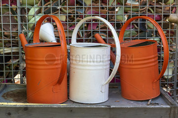 Decorative watering can in a garden