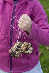 Young girl hanging homemade fat balls in winter
