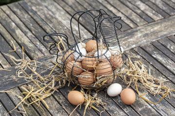 Basket filled with eggs on a garden table  spring  Pas de Calais  France