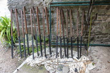 Wooden stakes  the base of which is soaked in bituminous tar  to fight against moisture and parasitic fungi  spring  Cotentin  France