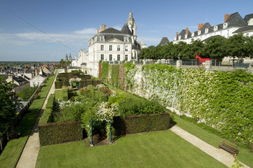 Rose garden of the bishop's terraces in Blois  France