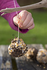 Young girl hanging homemade fat ball in winter