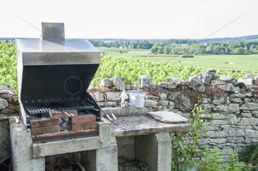 Barbecue in garden with view on the vineyard  Summer  Bourgogne  France