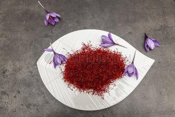 Saffron (Crocus sativus)  spice for cooking