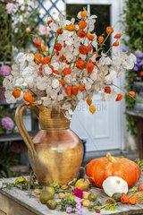 Autumn bouquet : Crop honesty (Lunaria annua) and Chinese lantern (Physalis alkekengi)