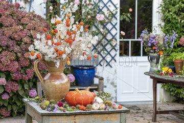 Autumn table in a garden  Pas de Calais  France