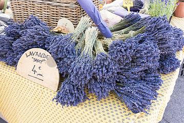 Bouquets of Sault lavender on a market  summer  Provence  France