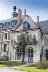 Wisteria (Wisteria sp) on the facade of the abbey of Valloires  autumn  Somme  France