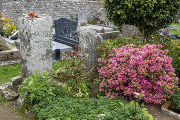 Jacques Prevert's grave in the cemetery of Omonville-la-Petite  spring  Manche  France