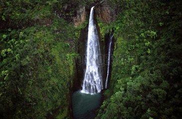 Waterfall in a tropical forest Kauai Island Hawai