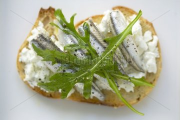 Bruschetta with anchovies and fresh goat's milk cheese France